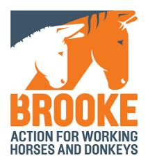 Brooke East Africa